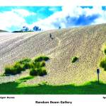 """Dunes and Plants"" by randombeam"