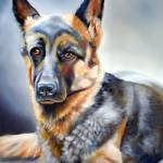 """German Shepherd"" by donnabonavia"