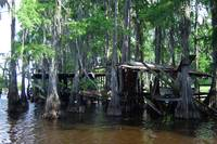 Ruined Boathouse, Louisiana