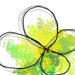 """Green II"" by UmbrellaS"
