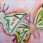 """""""Butterflies"""" by Afia"""