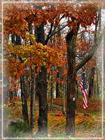 Autumn and the Flag