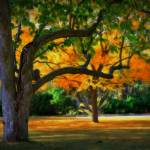 """October Trees 2"" by PerryWebster"