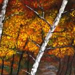 """Silver Birch in the Fall"" by lisacripps"