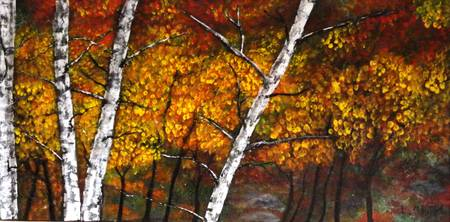 Silver Birch in the Fall