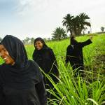 """""""Egyptian women coming out of the reeds, Luxor"""" by ileneperlman"""