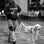 """DSC_2620 a dog with a man"" by itzick"
