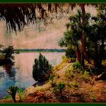 """Trees Along the Tomoka River"" by ChrisCrowley"