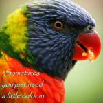 """Add a little color"" by MyTreasuredImages"