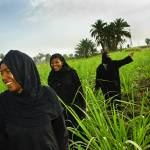"""Egyptian Women coming out of the reeds"" by ileneperlman"
