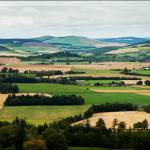 """Aberdeenshire"" by BarryCoupland"