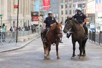 Wall Street Mounted Police