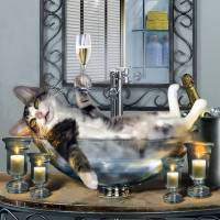 Tipsy Kitty in bubble bath Art Prints & Posters by Gina Femrite