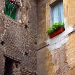 """The Apartment Windows"" by raetucker"