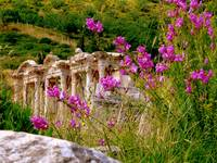 Ancient Library Of Celcius At Ephesus