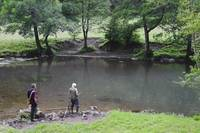 Fly Fishing at Upperdale (29425-RDA)