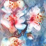 """cherry blossom II"" by YevgeniaWatts"