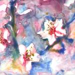 """cherry blossom I"" by YevgeniaWatts"