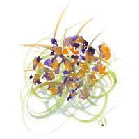Atom Flowers No15 Art Prints & Posters by MARINA KANAVAKI