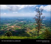 Top View @ Nandi Hills