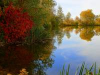 Story Of The Reflections In The Autumn Season