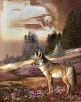 Coyote,so encounter with the iron hors