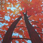 """Fall Maples"" by DreamGallery"