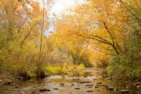 Colorado Autumn Creek