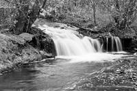 Creek Merge Waterfall in Black and White