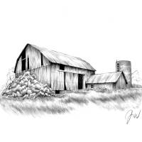 """No Country For Old Barns"" by Jamie Warkentin"