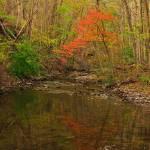 """""""Glowing Fall"""" by julieandel"""