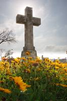 Galveston City Cemetery
