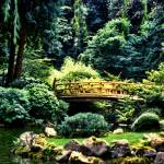 """Japanese Gardens"" by carylalys"