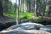 Creek in White Wolf Campground