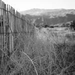 """""""Desert Fence"""" by skipjensen1"""