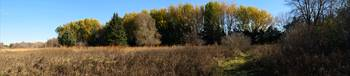 Fall Colors Pano