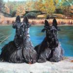 """scotties"" by csjones"