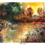 """Golden Pond"" by ronstetzer"