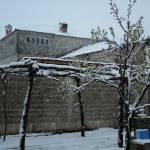 """Spring Snow"" by gezimgeci"