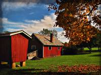 Hale Farm in Autumn