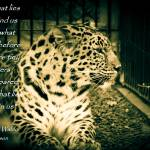 """""""What lies within"""" by MyTreasuredImages"""