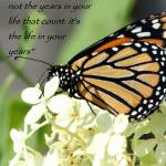 """""""Life within yhe years"""" by MyTreasuredImages"""