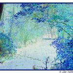 """Creek in Blue"" by SherHilliardPhotography"