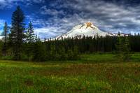 Mt Hood from Elk Meadows
