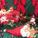 """Santa Cat, Holiday Scene w Red Bows, Kitten Antics"" by Chantal"