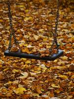 Autumn Swing Set