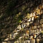 """Stone Wall"" by raetucker"
