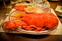 Steamed Lobster at Ye Olde Union Oyster House