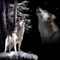 Howling memory Art Prints & Posters by Gina Femrite