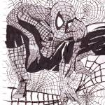 """Webbed Spiderman"" by PatrickMayne"